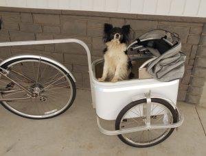 Bicycle-pet-trailer