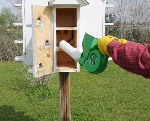 Cleaning-purple-martin-houses-4